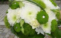 flores da maria